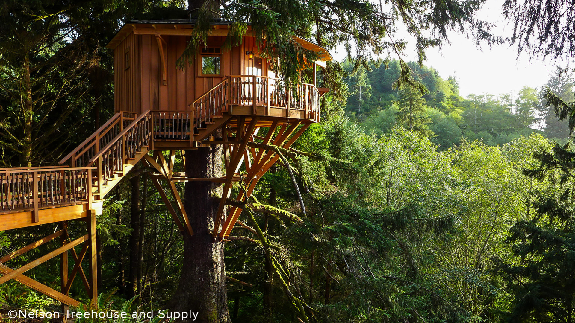 Nexkowin Luxury Treehouse Supports