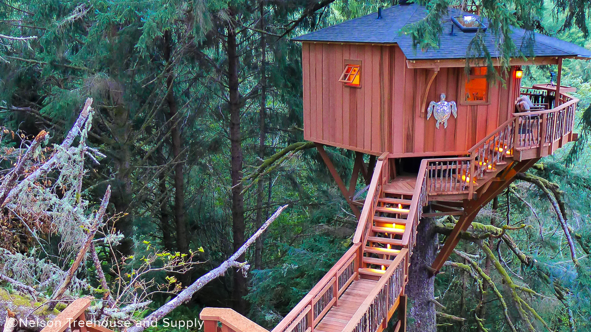 Nexkowin Luxury Treehouse Elevated Walkway