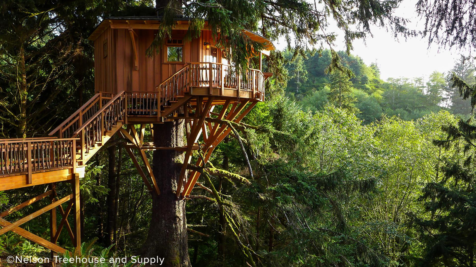 luxurious tree house minecraft nexkowin luxury treehouse supports neskowin swenson say fagt