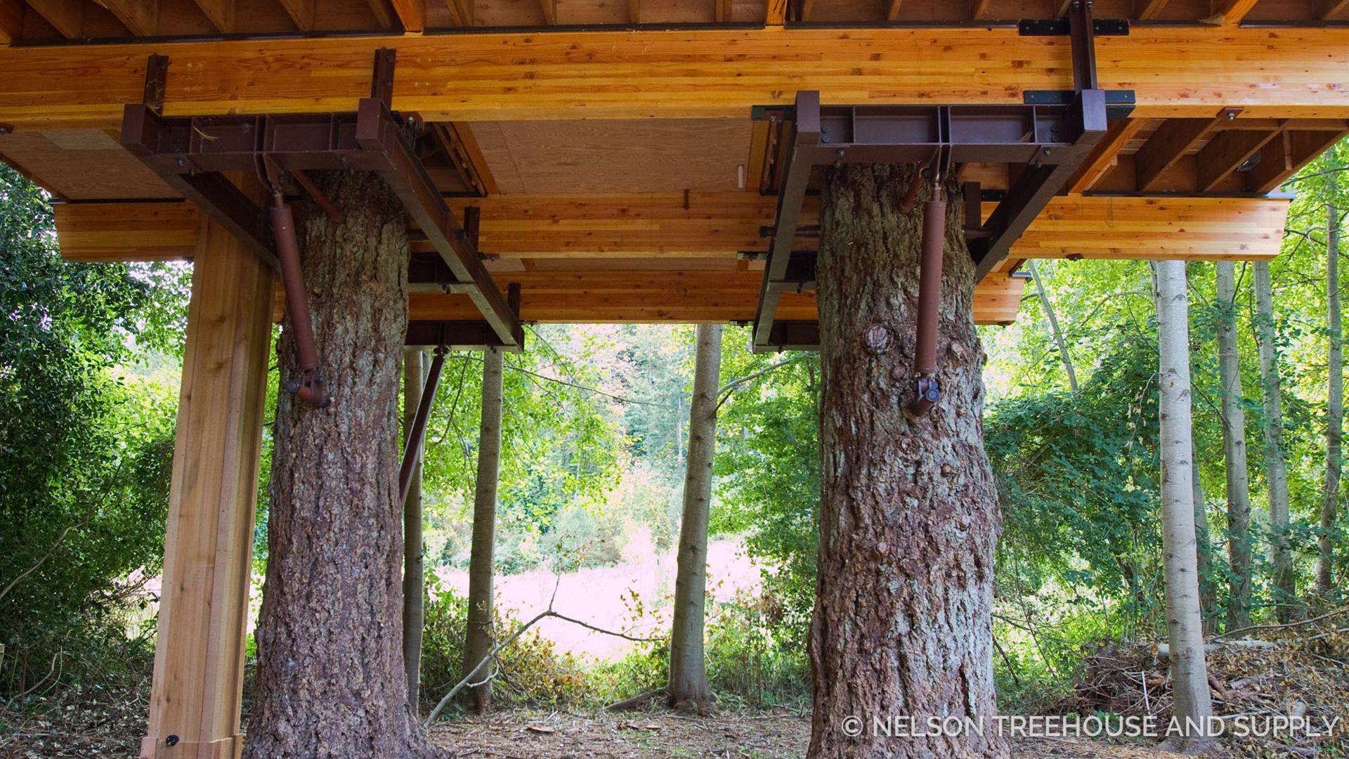 orcas island treehouse swenson say fag233t