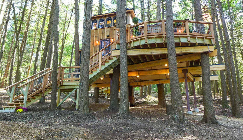 Magical Main Treehouse Swenson Say Fag 233 T